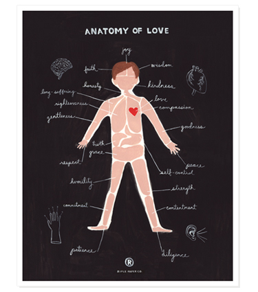 G_print_anatomy